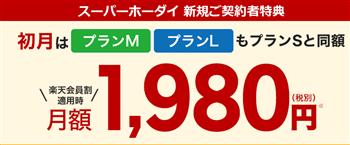 楽天モバイルスーパーホーダイの料金表の初月金額