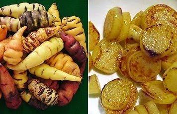 Mashua food