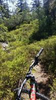 Technischer Singletrail zum Jezerní hora