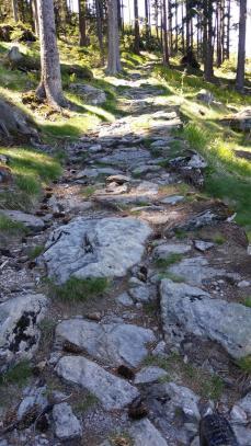 Wanderweg von Hamry zum Osser