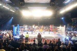 boksing