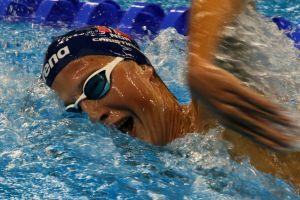 Norges Svømmeforbund