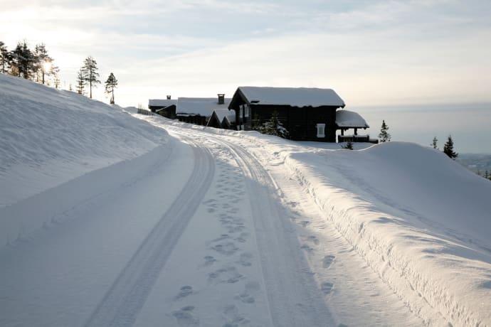 vinter hytte forsikring