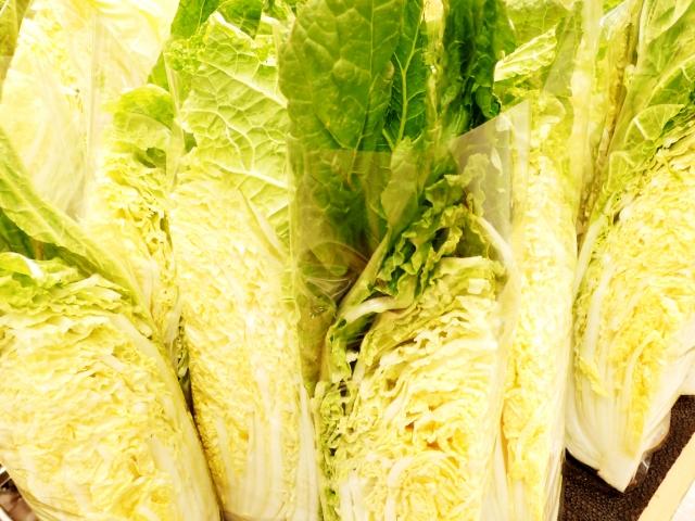 カットした白菜の保存方法
