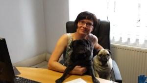 Bürohunde Fanny und Emma