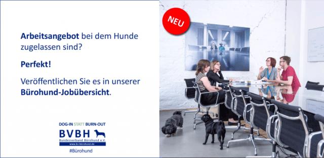 Job mit Bürohund anbieten