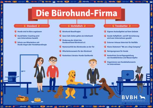 Infografik: Bürohund-Firma