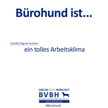 B-Hund_ist_Buscher