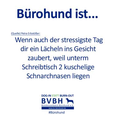 B-Hund_ist_Erbstoesser