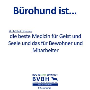 B-Hund_ist_Feldmann
