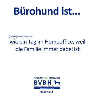 B-Hund_ist_Friedrich