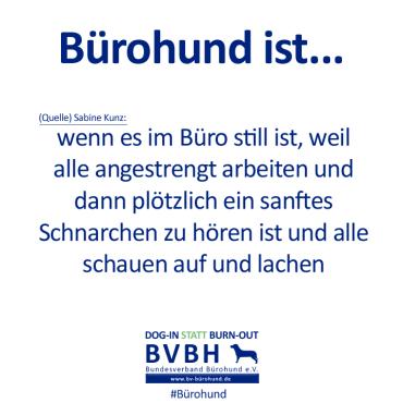 B-Hund_ist_Kunz