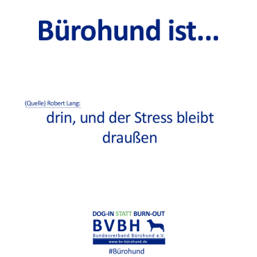 B-Hund_ist_Lang