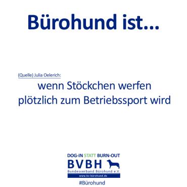 B-Hund_ist_Oelerich