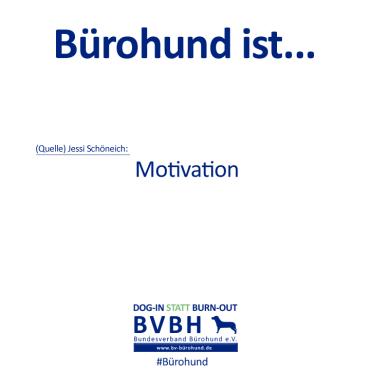 B-Hund_ist_Schöneich