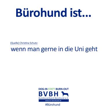 B-Hund_ist_Schutz