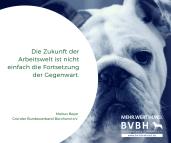 Bürohund Die Zukunft der Arbeitswelt