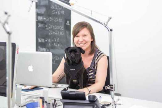 Bürohund - Hund im Büro -MehrWertHund für Mitarbeiter