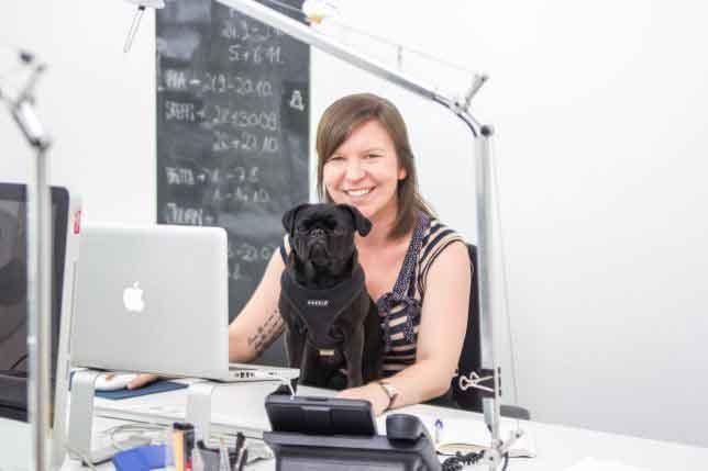 Bürohund-MehrWertHund für Mitarbeiter