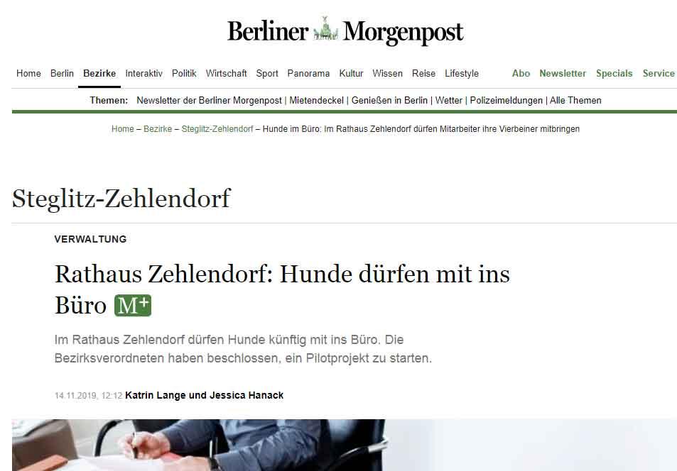Morgenpost-Bürohund-Zehlendorf
