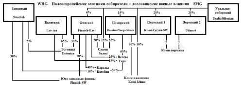 ДеревоСеверv2-1