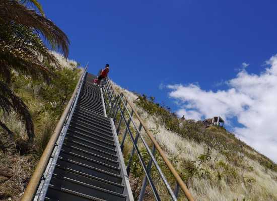 頂上近くの階段