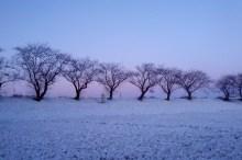 初雪の候 意味