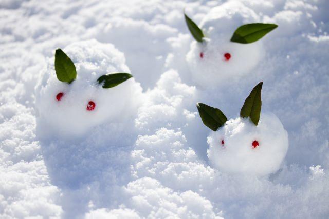 降雪の候 意味