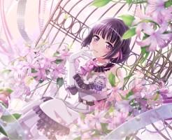 白金燐子 星4[Special birthday!]