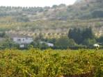 image of rear view of Cortijo Las Viñas villa info