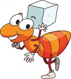 hormiga feliz cargando su comida