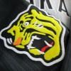 阪神タイガースのユニホームをいただきました