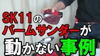 SK11 パームのバッテリー (1)