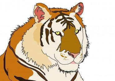 虎イラスト