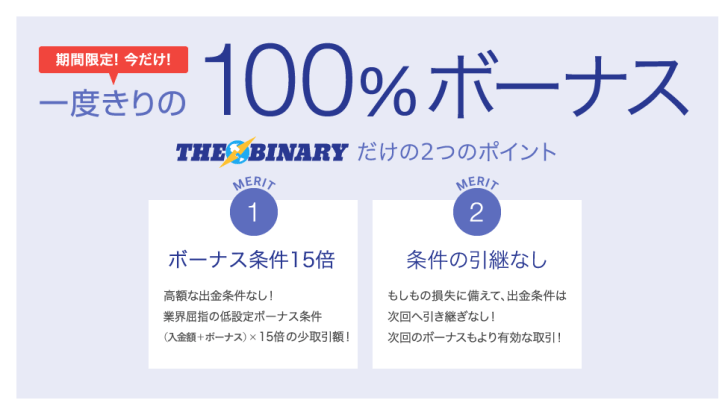ザバイナリー/THE BINARY