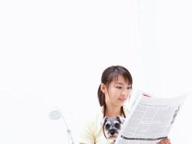 子宝神社 体験ブログ