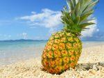 パイナップル 妊活