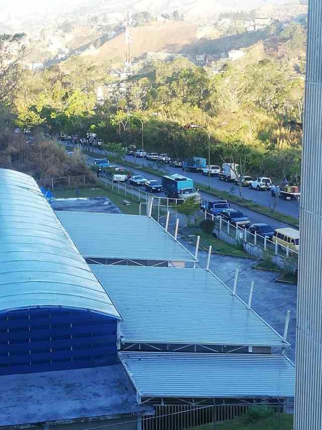 Kilométrica cola por gasolina «invadió» urbanización La Rosaleda Sur