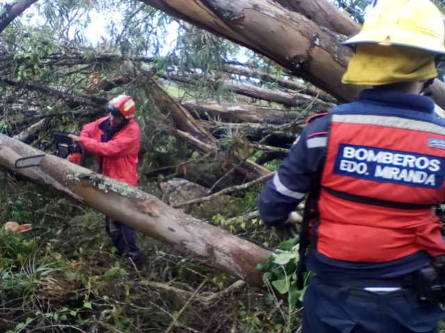 Tres viviendas afectadas y una docena de sectores sin energía eléctrica dejaron lluvias en la capital mirandina