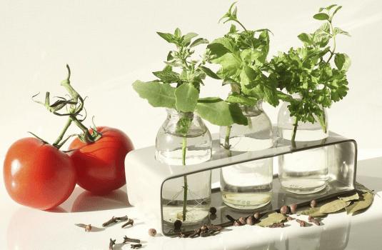 Was ist die optimale Ernährung für den Menschen?