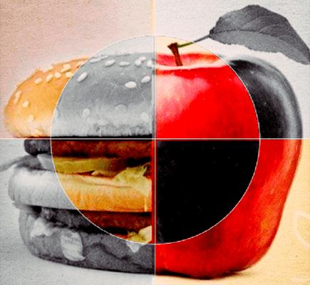 Studienlage – Diäterfolg: Warum es nicht nur um Kalorien geht!