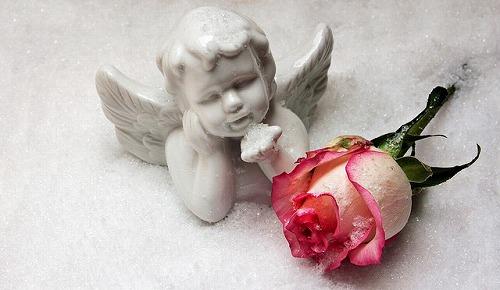 s-angel-1797881_640