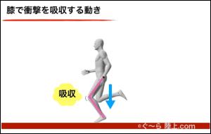 膝で吸収_腰が低い走り
