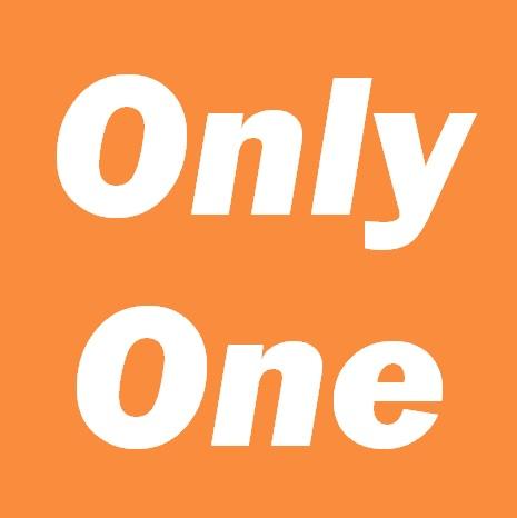 オンリーワン 1ロット約9ヶ月半のフォワードテストで100万円の収益を達成した実績