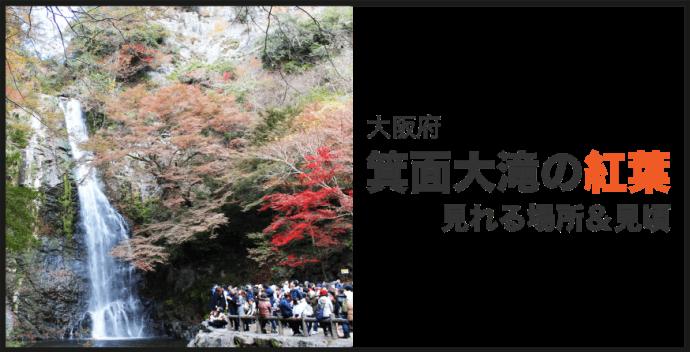 箕面大滝 紅葉