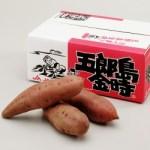 サツマイモ五郎島金時の通販