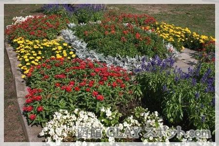 函館市立駒場小学校 YUKI 磯谷有希 母校 校庭の隅にあった花壇 JAM JUDY AND MARY ジュディマリ