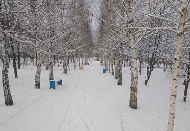 На севере Одесской области выпал снег. Фотофакт
