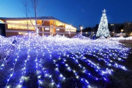 【12月8日(土)〜1月14日】スターダスト・ページェント海ぼたる2018|約4万5千の LED電球が駅前広場を華やかに彩る。
