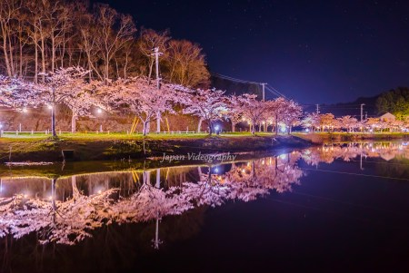 平筒沼ふれあい公園桜まつり©Japan Videography
